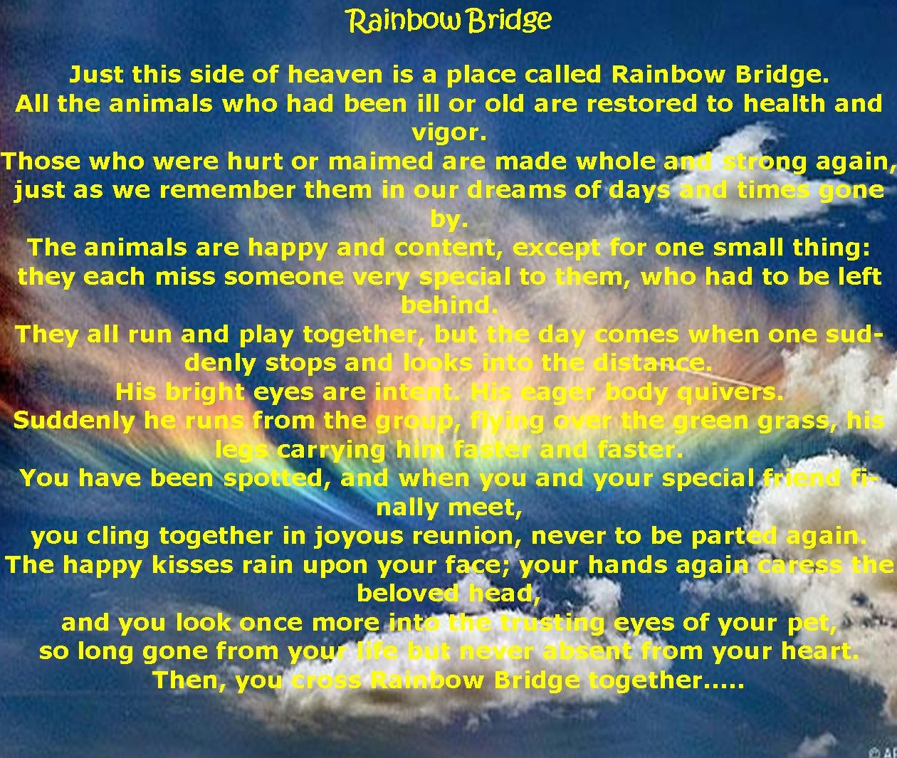 Members that are waiting for us to join them at the rainbow bridge